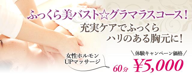 【ふっくら美バスト☆グラマラスコース】充実ケアでふっくらハリのある胸元に! | émotion(エモシオン)の画像
