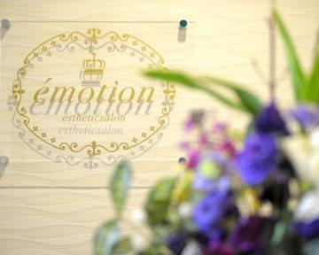 Concept of émotion
